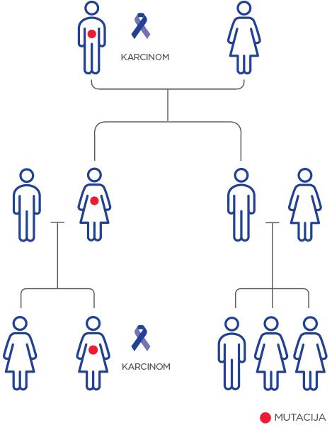 PreSENTIA_mutacija